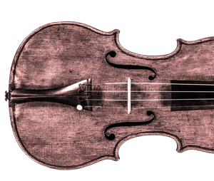 Picture for category Violino