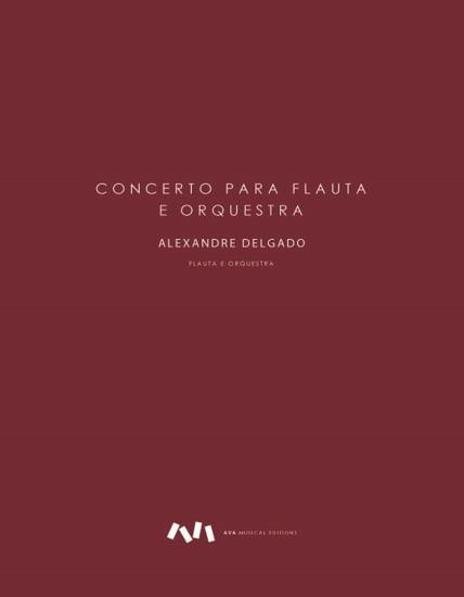 Imagem de Concerto para flauta