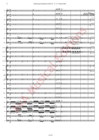 Imagem de Fantasia para Orquestra em Ré M