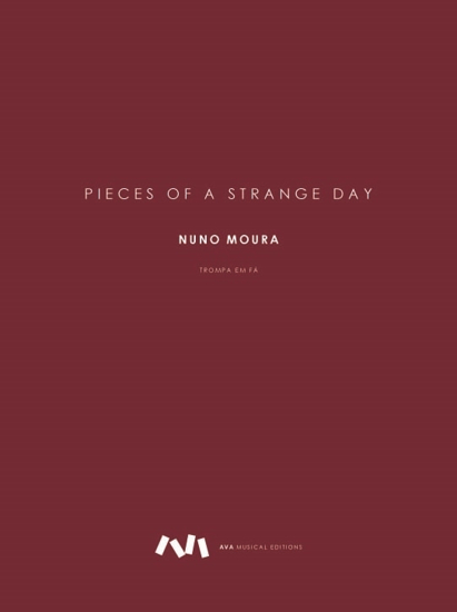 Picture of Pieces of a Strange Day